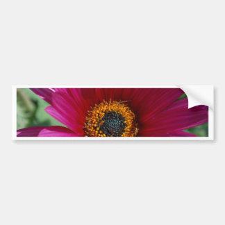 Magenta Flower Bumper Sticker