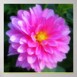 Magenta Flower Poster