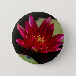 Magenta Lotus Waterlily 2 Inch Round Button