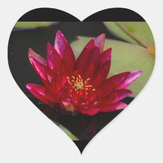 Magenta Lotus Waterlily Heart Sticker