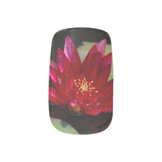 Magenta Lotus Waterlily Minx Nail Art