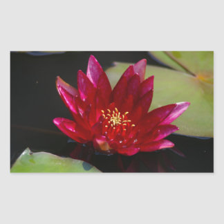 Magenta Lotus Waterlily Sticker