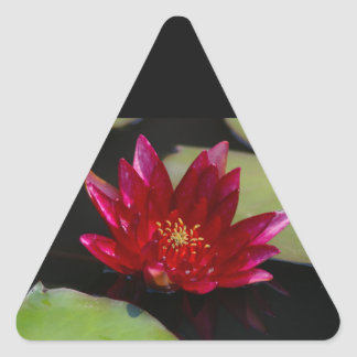Magenta Lotus Waterlily Triangle Sticker