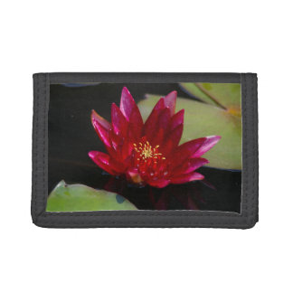 Magenta Lotus Waterlily Trifold Wallets