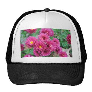 Magenta Mums Trucker Hat