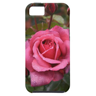 Magenta Rose For You! iPhone 5 Case