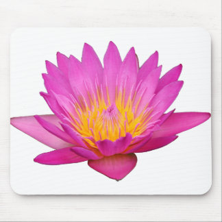 Magenta Waterlily 2 Mouse Pad
