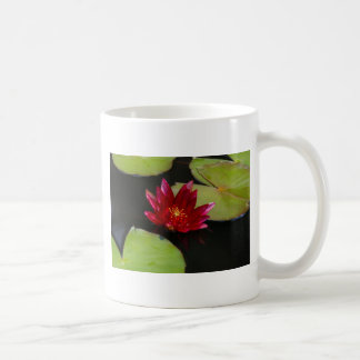 Magenta Waterlily Mug