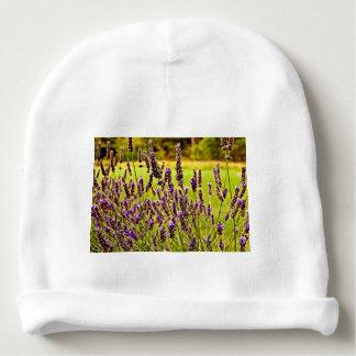 Magic Lavender Baby Beanie