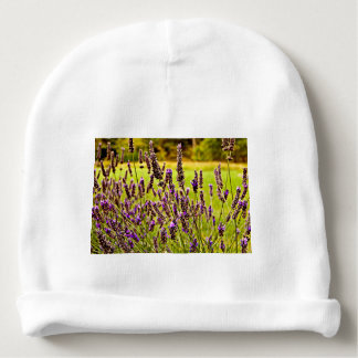 Magic Lavender Baby Beanie
