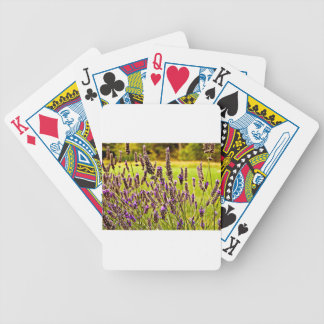 Magic Lavender Bicycle Playing Cards
