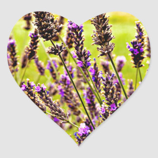 Magic Lavender Heart Sticker