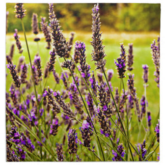 Magic Lavender Napkin