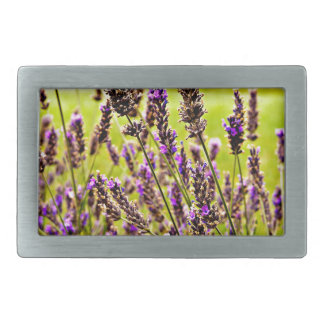 Magic Lavender Rectangular Belt Buckle
