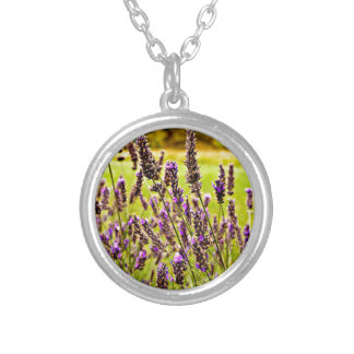 Magic Lavender Silver Plated Necklace