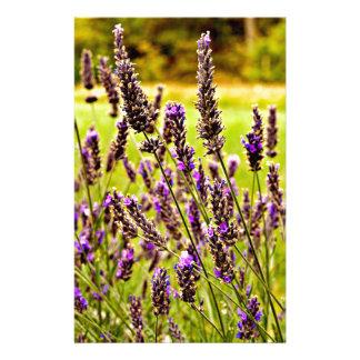 Magic Lavender Stationery