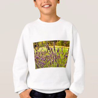 Magic Lavender Sweatshirt