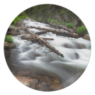 Magic Mountain Stream Plate