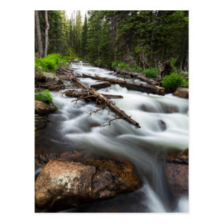 Magic Mountain Stream Postcard