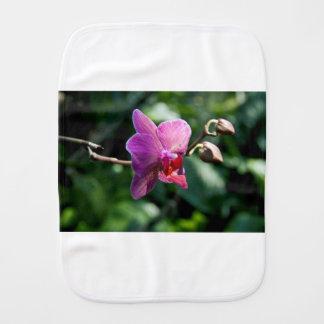 Magic orchid burp cloth