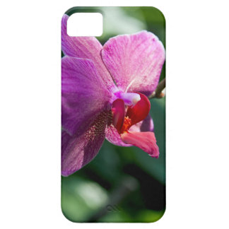 Magic orchid iPhone 5 cover