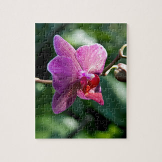 Magic orchid jigsaw puzzle