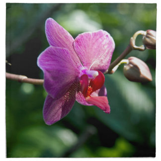 Magic orchid napkin
