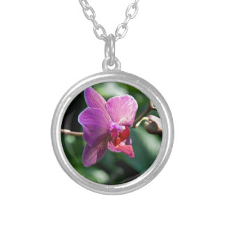 Magic orchid silver plated necklace