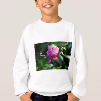 Magic orchid sweatshirt