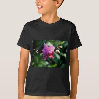 Magic orchid T-Shirt