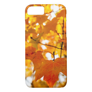 Magical Autumn Afternoon iPhone 8/7 Case