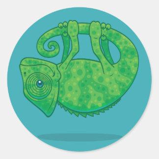 Magical Chameleon Classic Round Sticker