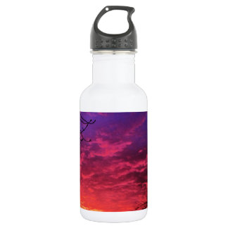 Magical Colorful Sunset 532 Ml Water Bottle