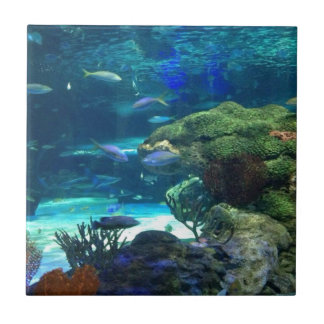 Magical Coral Reef Tile