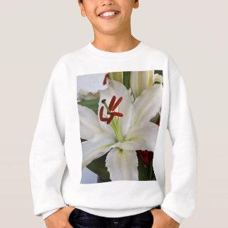 Magical Love Sweatshirt