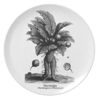 Magical Mandrake Plate
