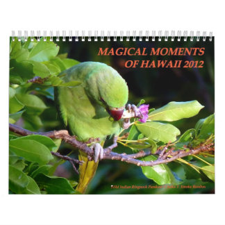 Magical Moments of Hawaii 2012 Calendar