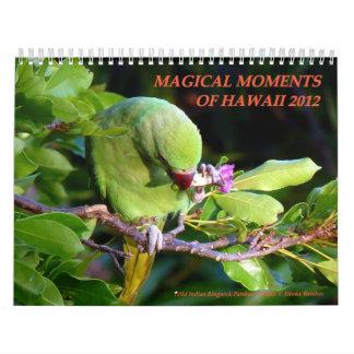 Magical Moments of Hawaii 2012 Wall Calendars