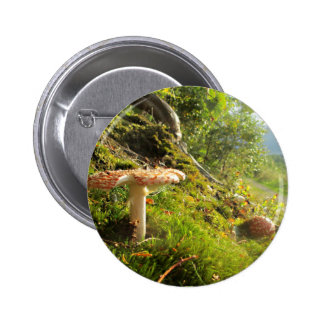 Magical Mushrooms 1 2 Inch Round Button