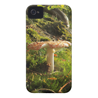Magical Mushrooms 1 iPhone 4 Cover