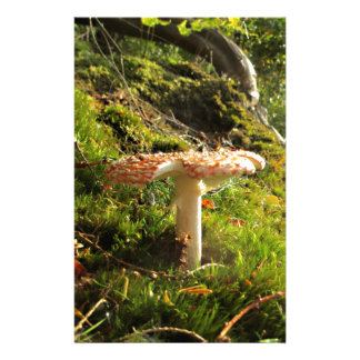 Magical Mushrooms 1 Stationery Paper