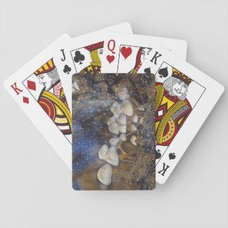Magical Mushrooms Poker Deck