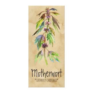Magical Plants Motherwort 18.30'' x 41.73'' Canvas