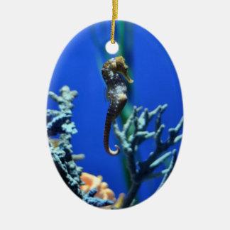 Magical Seahorse Ceramic Ornament
