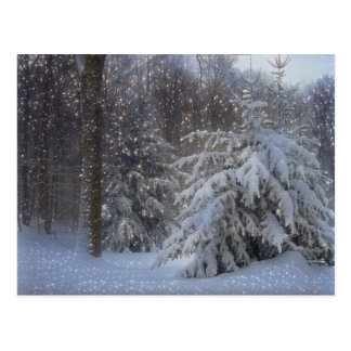 Magical Starry Christmas Postcard