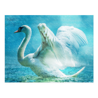 Magical Swan During a Summer Shower Postcard