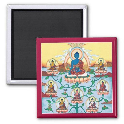 MAGNET 8 Medicine Buddhas - square magnet