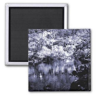 Magnet - Autumn Stream - Blue Halftone