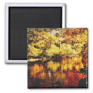 Magnet - Autumn Stream - Full Color