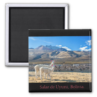 Magnet, Flames Salt flat of Uyuni, Bolivia Magnet